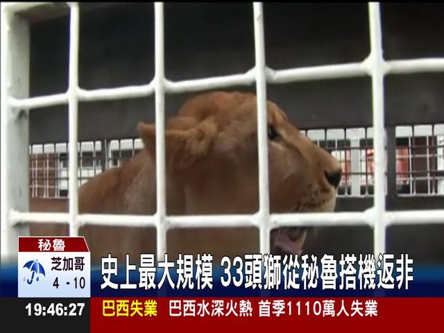 动物被关笼里失去自由图片