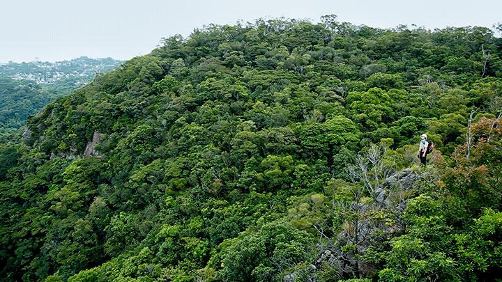 森林女孩 經歷險境巡山護林