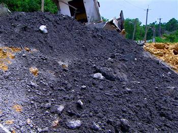 山坡地濫墾 毀棲地