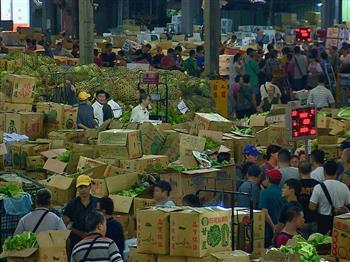 蔬果拍賣員 拂曉出擊