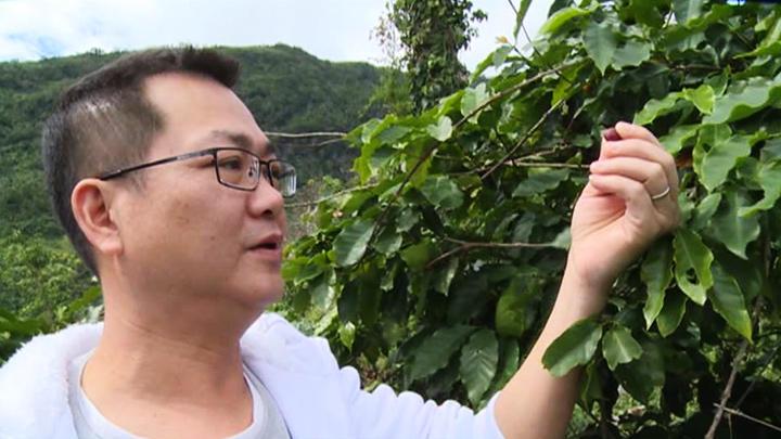 行銷故鄉 電影導演咖啡夢
