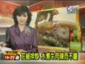 花椒拌炒 水煮牛肉辣而不嗆 道地鹹魚雞粒炒飯 耗工費時 招牌絲瓜小籠包 湯汁飽滿