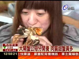 大閘蟹公母分開養肉質甜蟹黃多