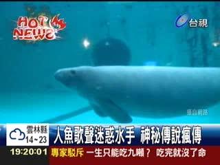 大堡礁海底攝影意外驚見美人魚?