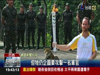 巴西奧運吉祥物美洲豹 聖火傳遞後被殺