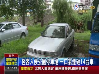 怪客入侵公園停車場一口氣連砸14台車