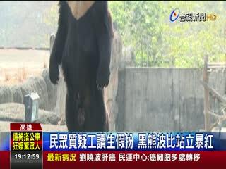 壽山動物園黑熊爬出獸欄麻醉槍圍捕