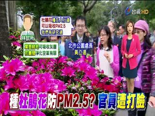 爭預算北市公園處:杜鵑花可防PM2.5