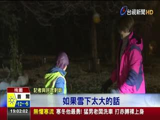 拉拉山神木區雪景絕美民眾一早上山追雪