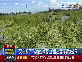 萬丹泥火山噴發淹沒1公頃稻作收成沒了