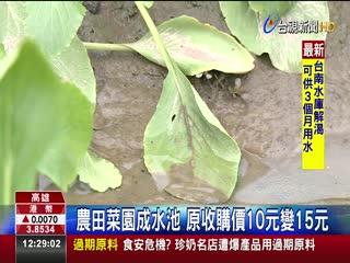 慘!豪雨農損逾2000萬9成菜葉全泡水