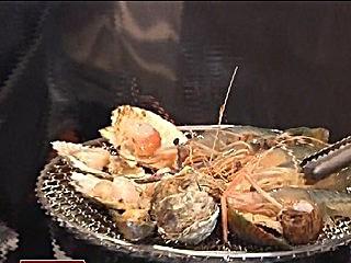 屏東引進曼谷流水蝦吃到飽民眾搶嚐鮮