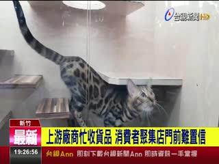 知名寵物連鎖店動物王國17分店驚傳歇業