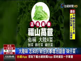 涉歧視?大陸妹正名福山萵苣網:高麗菜呢?