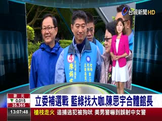 立委補選戰藍綠找大咖.陳思宇合體館長